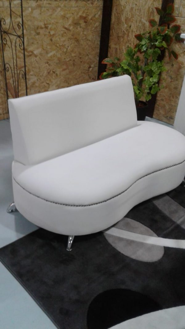 Kidney couch
